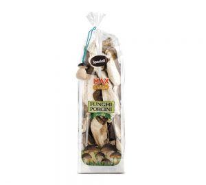 sacchetto funghi porcini secchi speciali max delizie 100 gr.